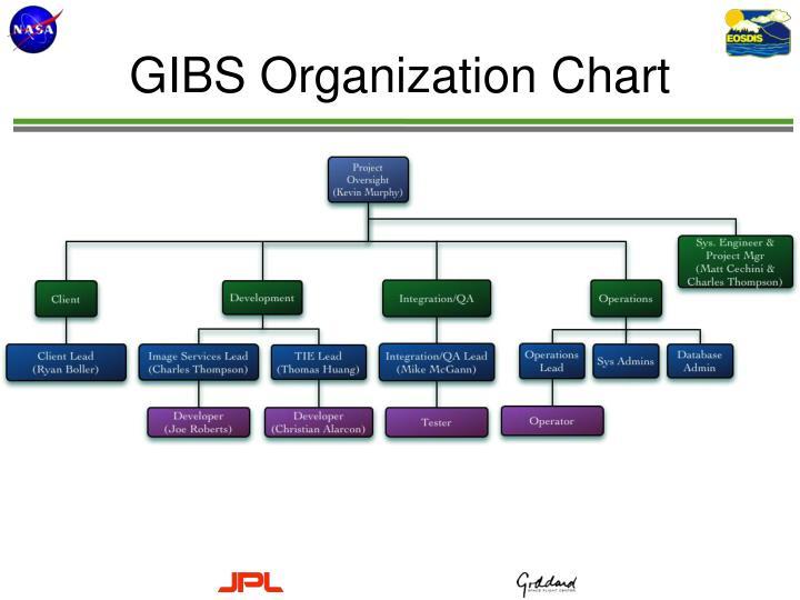 GIBS Organization Chart