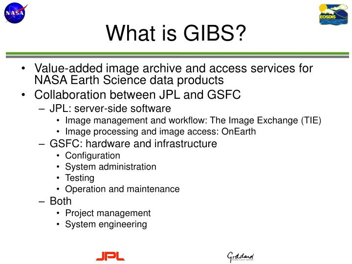 What is GIBS?