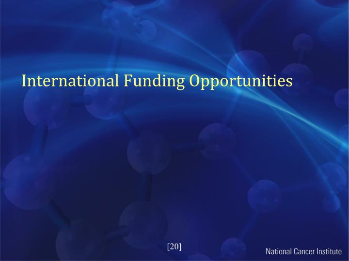 International Funding Opportunities