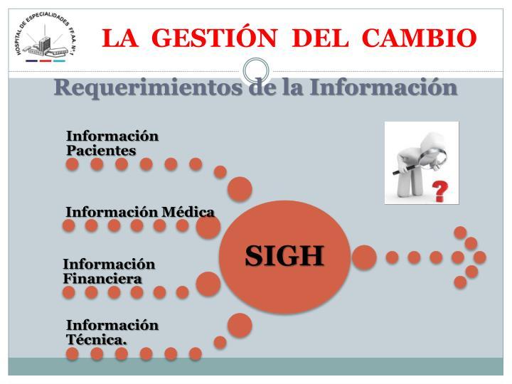 Requerimientos de la Información