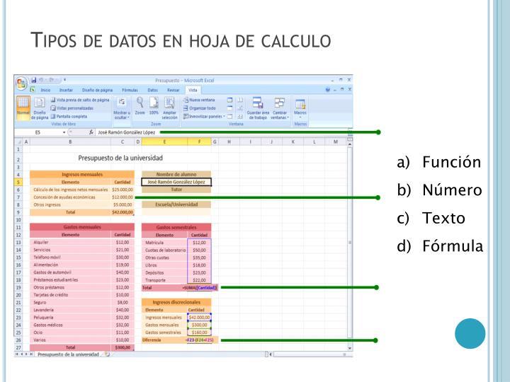 Tipos de datos en hoja de calculo