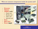 what are common components inside the system unit