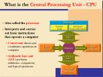 what is the central processing unit cpu