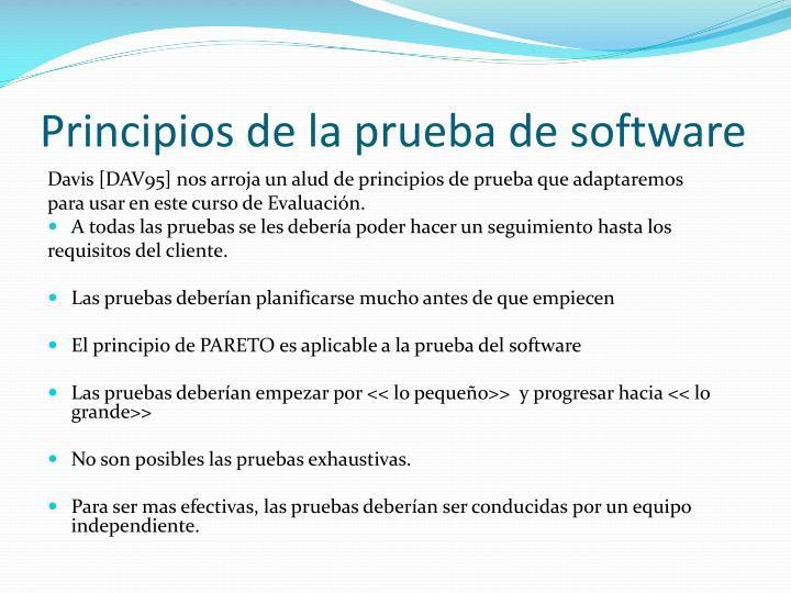 Principios de la prueba de software