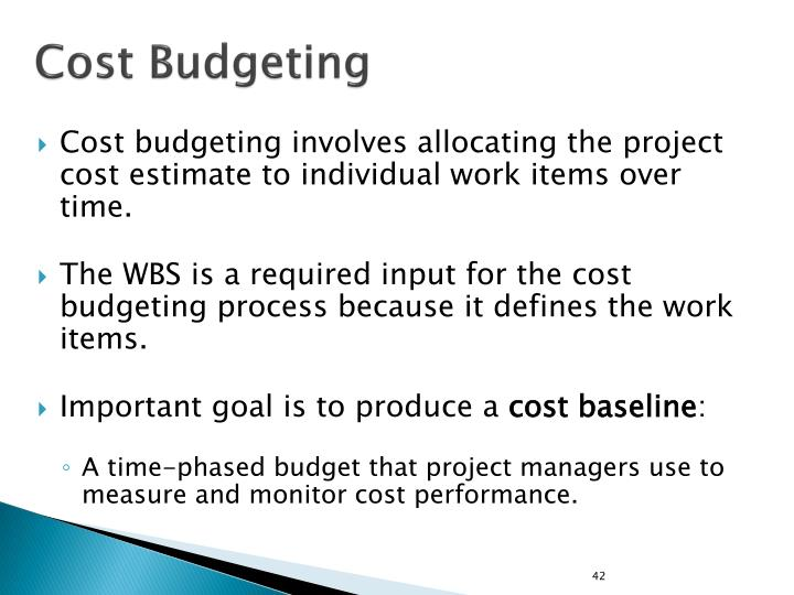 Cost Budgeting