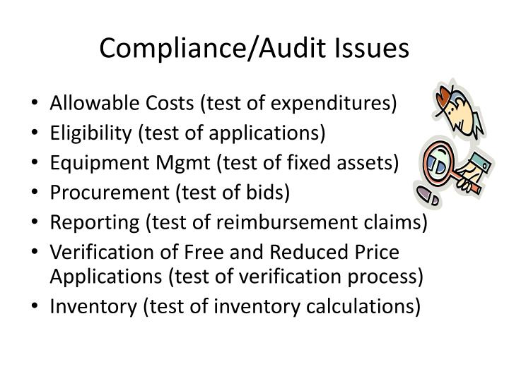 Compliance/Audit Issues