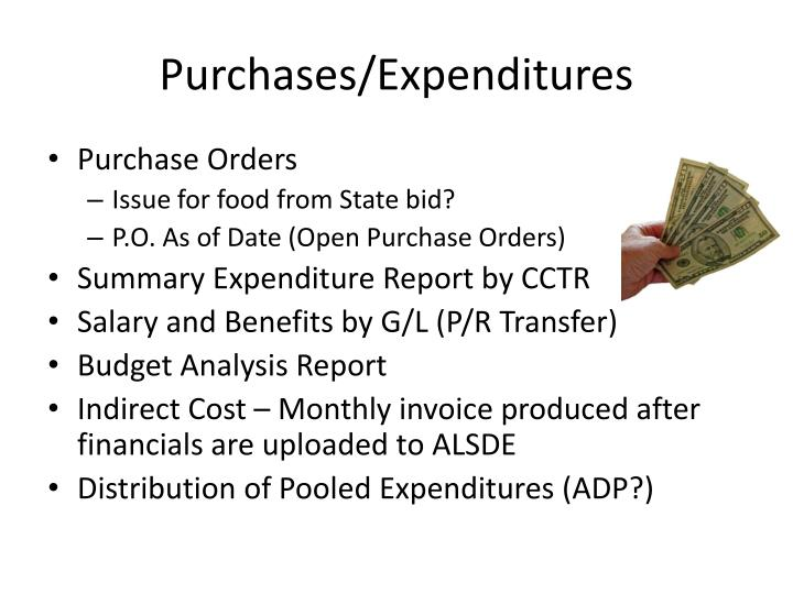 Purchases/Expenditures