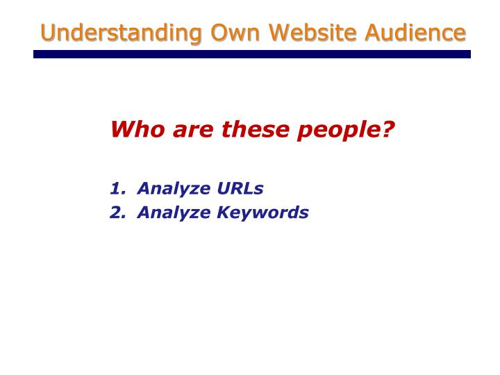 Understanding Own Website Audience