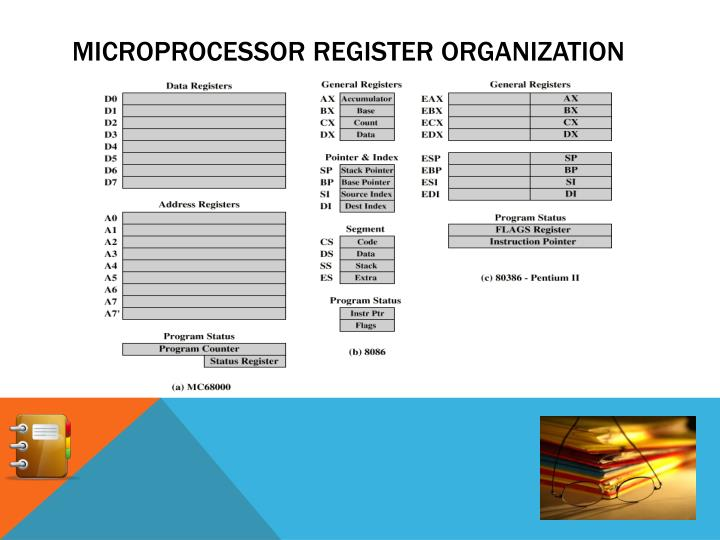 Microprocessor register organization