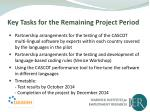 key tasks for the remaining project period