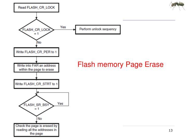 Flash memory Page Erase