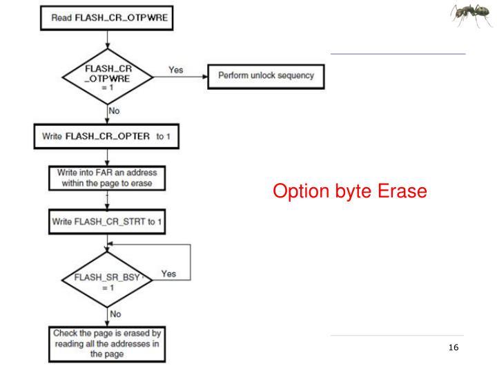 Option byte Erase