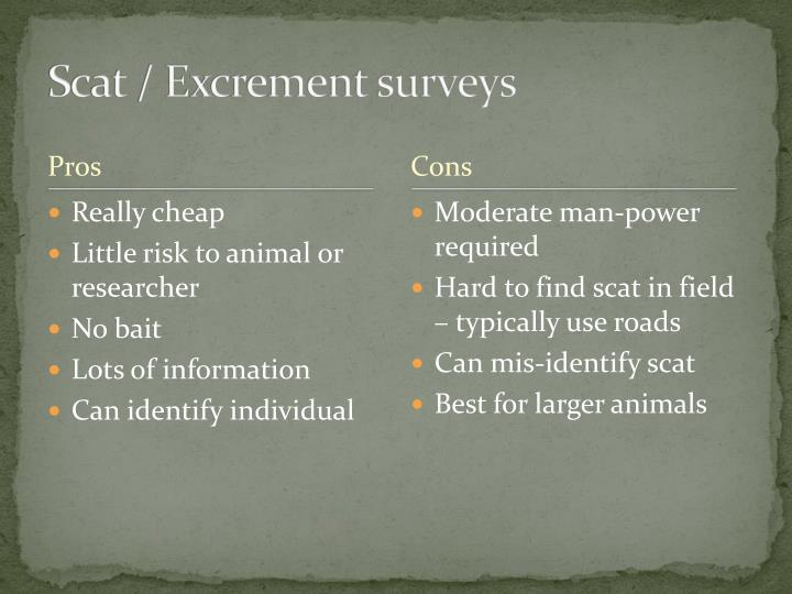 Scat / Excrement surveys