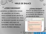 virus de enlace