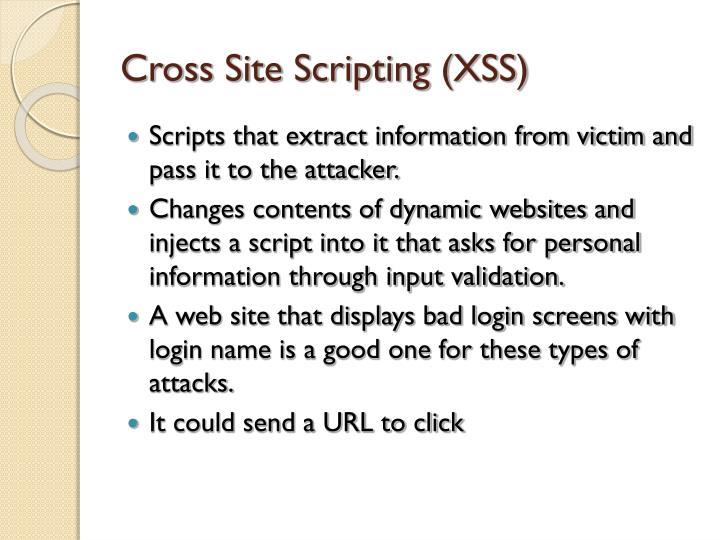 Cross Site Scripting (XSS)