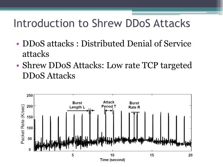 Introduction to shrew ddos attacks