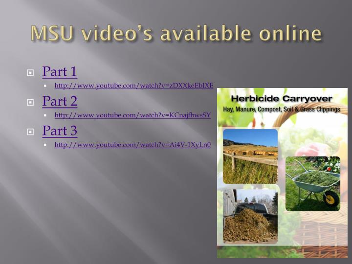 MSU video's available online