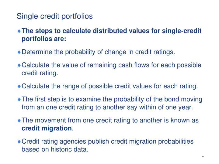 Single credit portfolios