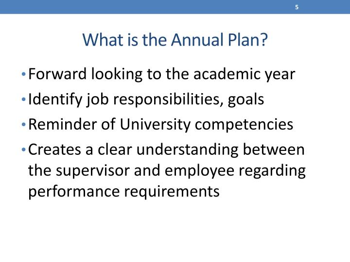 What is the Annual Plan?