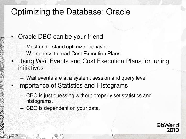 Optimizing the Database: Oracle