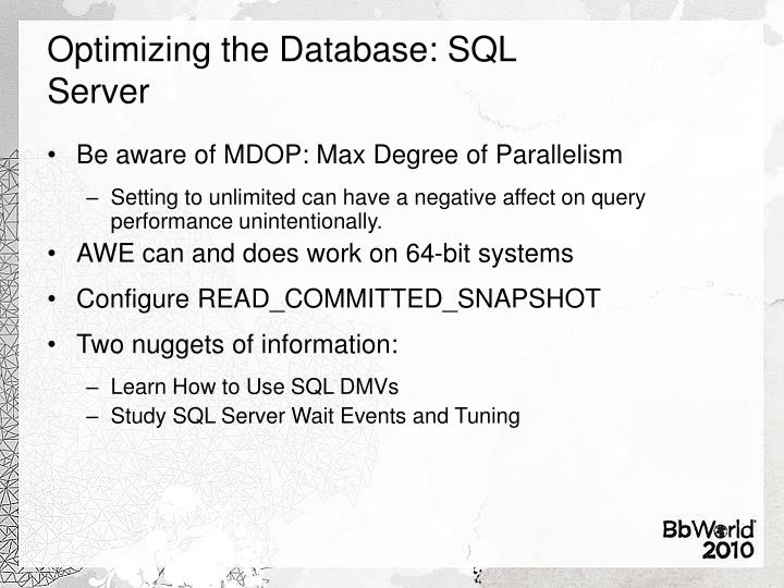 Optimizing the Database: SQL Server