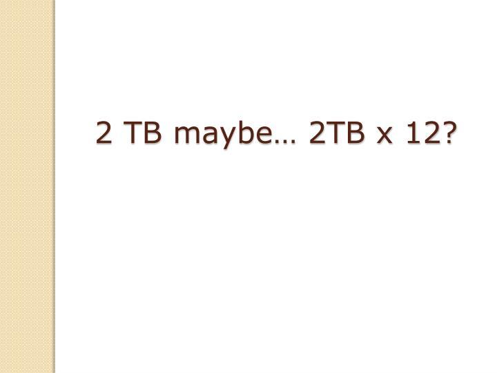 2 TB maybe… 2TB x 12?