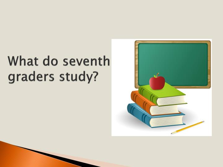 What do seventh graders study?