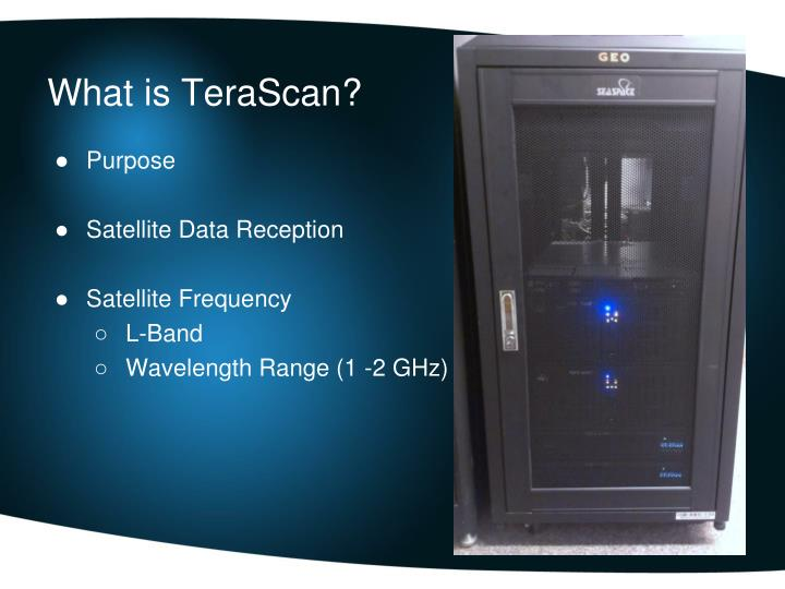 What is TeraScan?