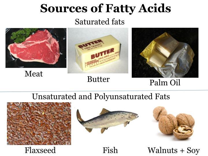 Sources of Fatty Acids