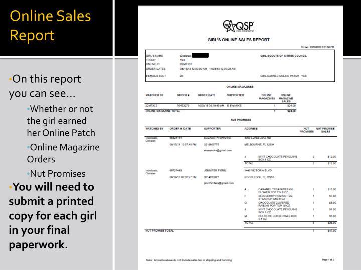 Online Sales Report