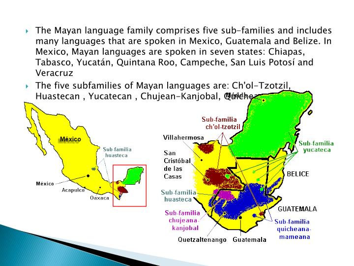 The Mayan language family comprises five sub-families and includes many languages that are spoken in Mexico, Guatemala and Belize. In Mexico, Mayan languages are spoken in seven states: Chiapas, Tabasco, Yucatán, Quintana