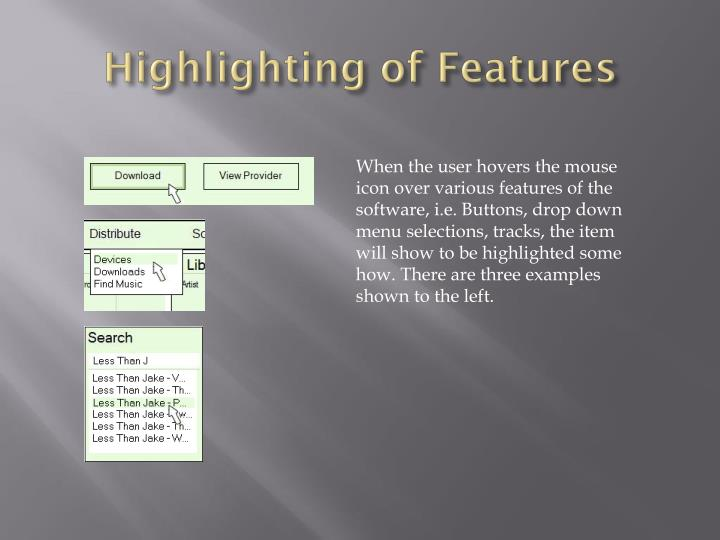 Highlighting of Features
