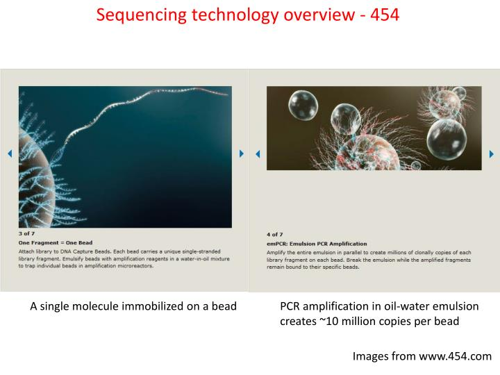 Sequencing technology overview - 454