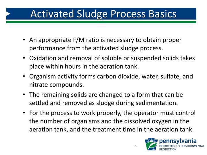 Activated Sludge Process Basics