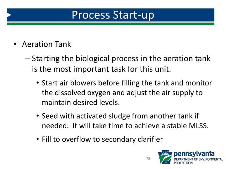 Process Start-up
