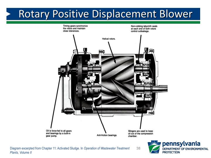 Rotary Positive Displacement Blower