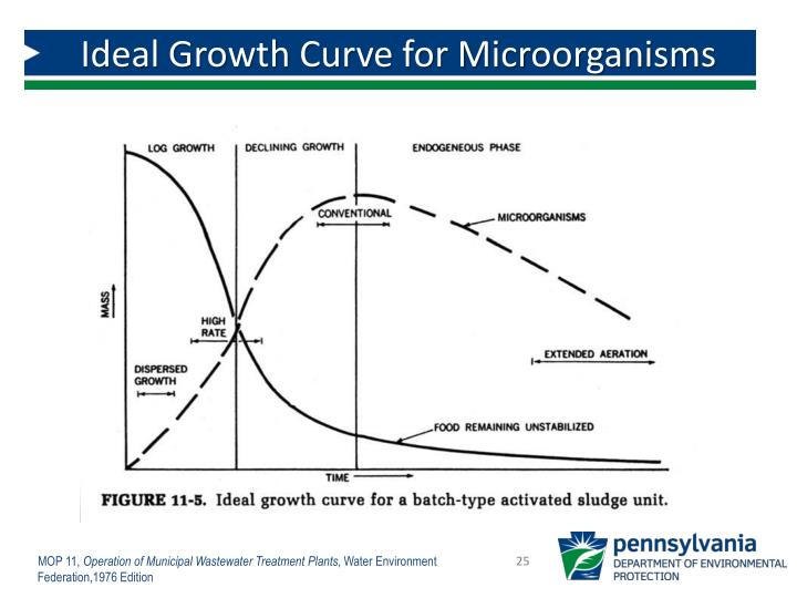 Ideal Growth Curve for Microorganisms