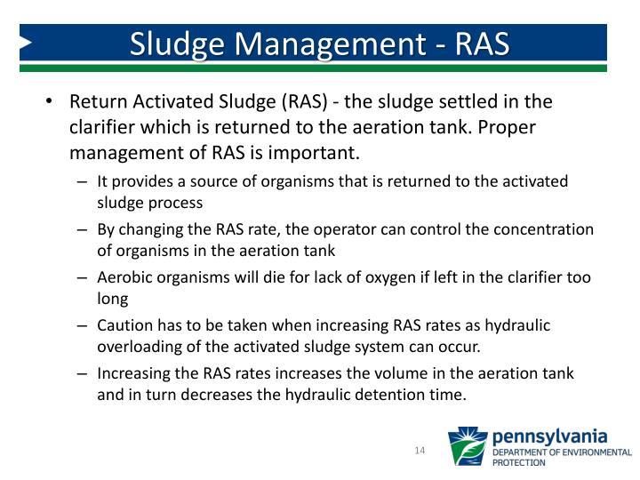 Sludge Management - RAS