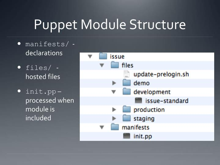 Puppet Module Structure