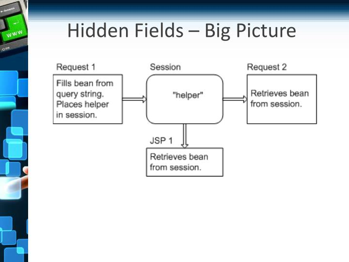 Hidden Fields – Big Picture