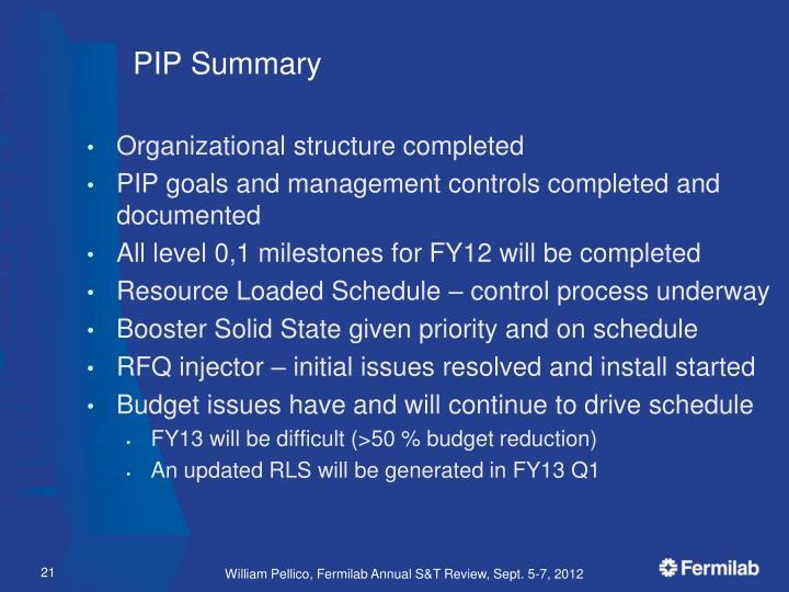PIP Summary