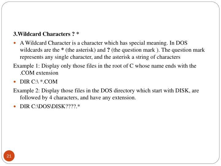 3.Wildcard Characters ? *