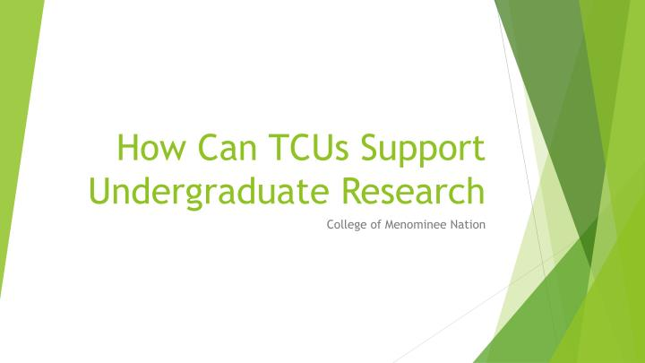 How can tcus support undergraduate research