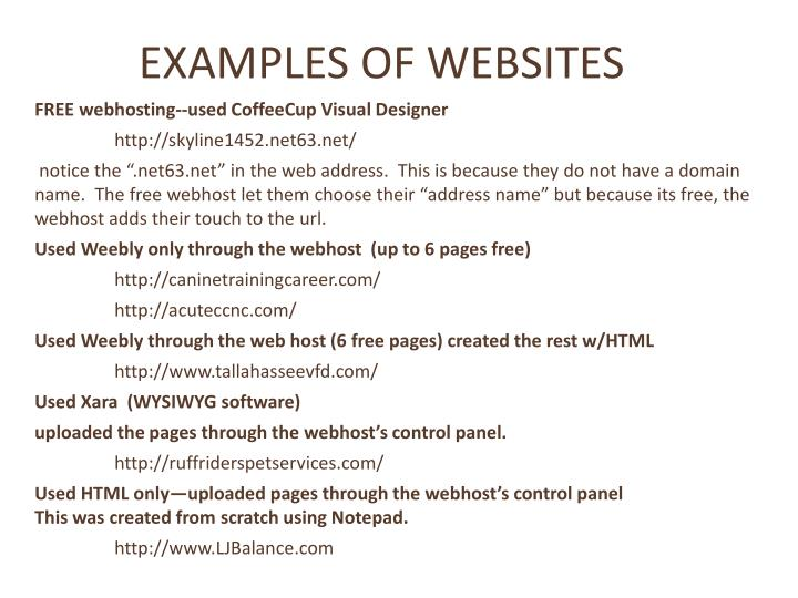 EXAMPLES OF WEBSITES