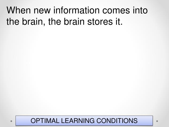 When new information comes into the brain, the brain stores it.