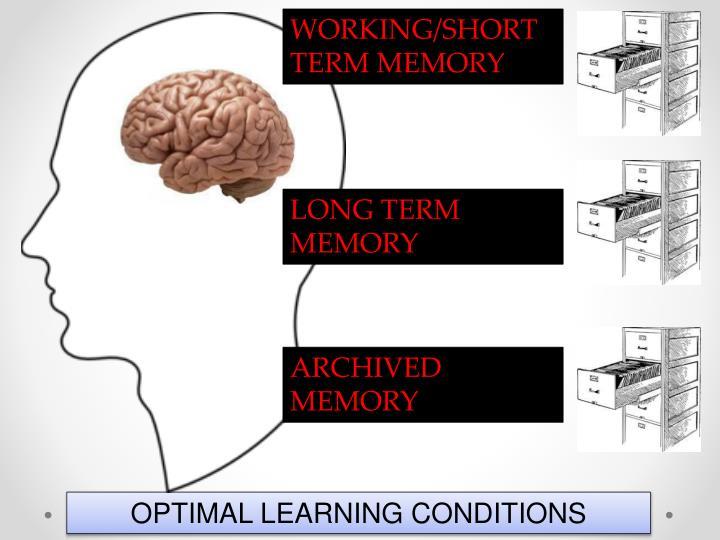 WORKING/SHORT TERM MEMORY