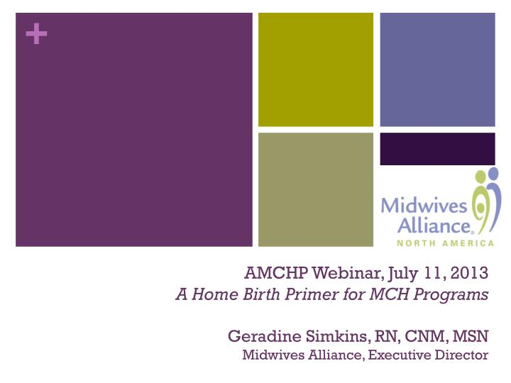 AMCHP Webinar, July 11, 2013