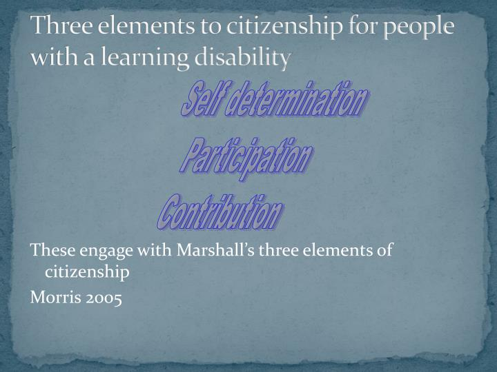 Three elements to citizenship for people with a learning disability