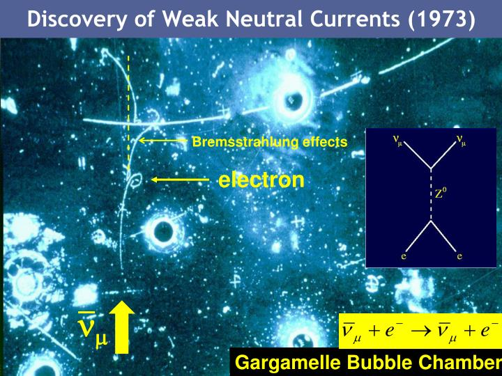 Discovery of Weak Neutral Currents (1973)
