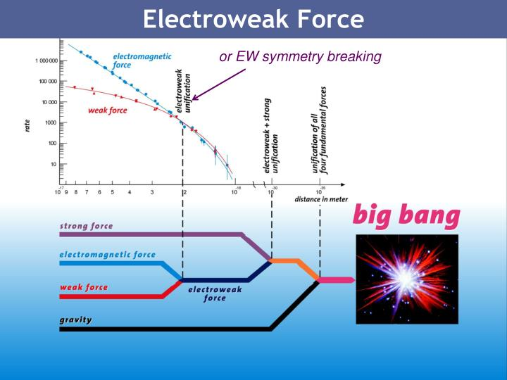 Electroweak Force